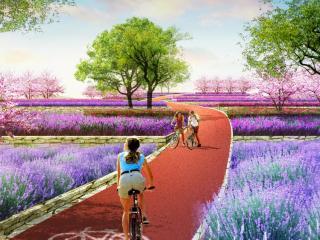 广西南宁洛克玫瑰庄园景观规划与欧宝体育官网设计